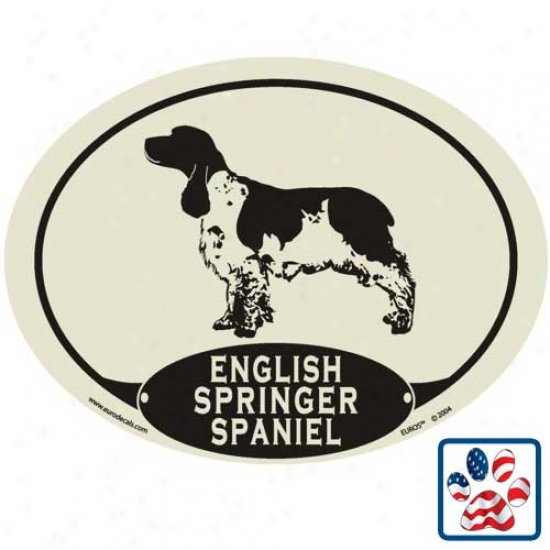 European Style English Springer Spaniel Auto Decal