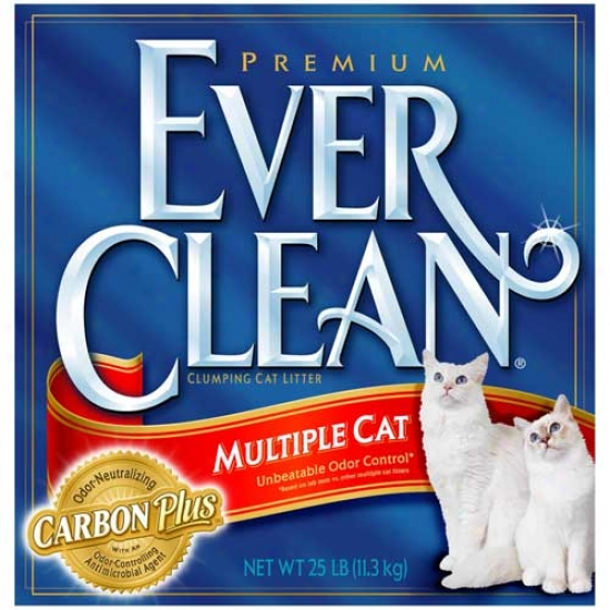 Everclean Multiple Cat Litter - 25lb