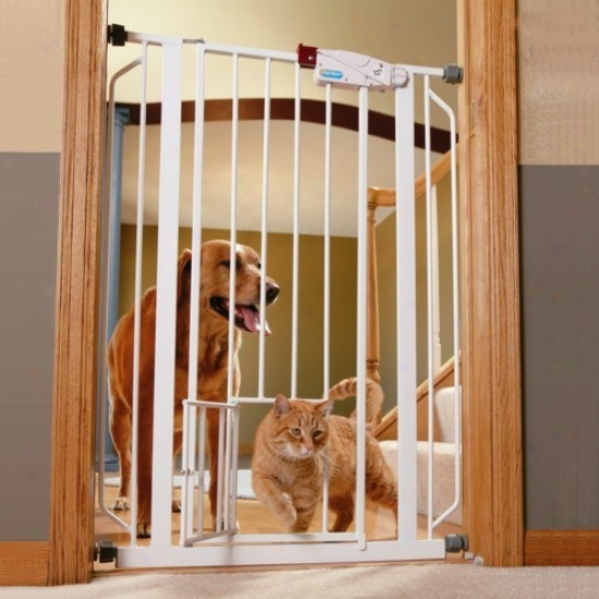 Extra Tall Wakl-thru Metal Gate Attending Small Pet Door