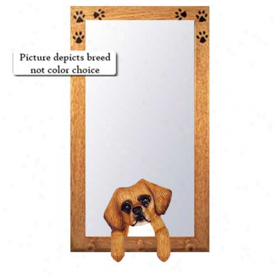 Fawn Tibetan Spaniel Public room Mirror With Oak Natural Frame