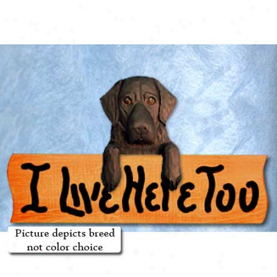 Flat-coated Retriever I Live Here Too Maple Finish Sign Brown