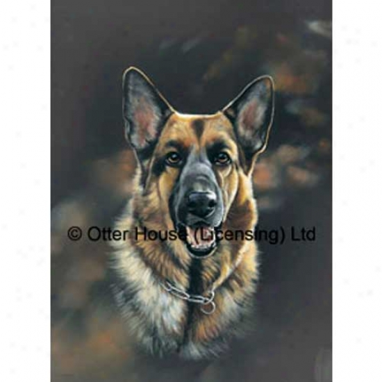 German Shepherd Dog Iris