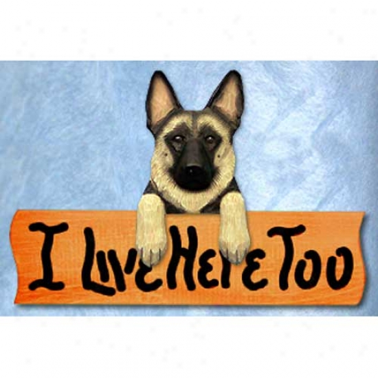 German Shepherd Dog I Live Here Too Maple Finish Sign Tan With Black Saddle