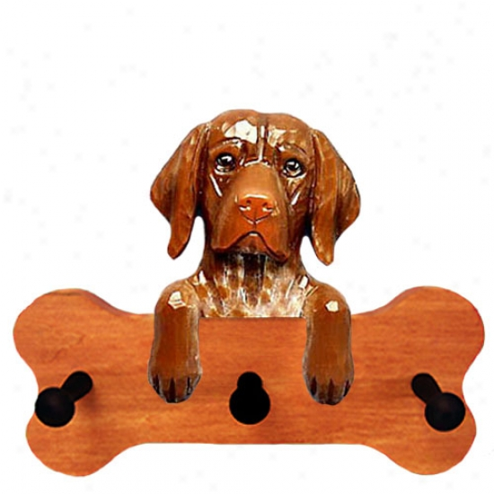 German Shorthaired Pointer Bone Hang Up Maple Finish