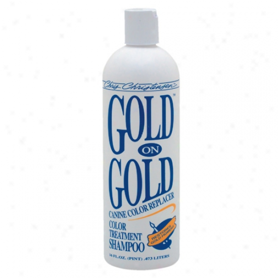 Gold On Gold Shampoo 16oz By Chris Christensen