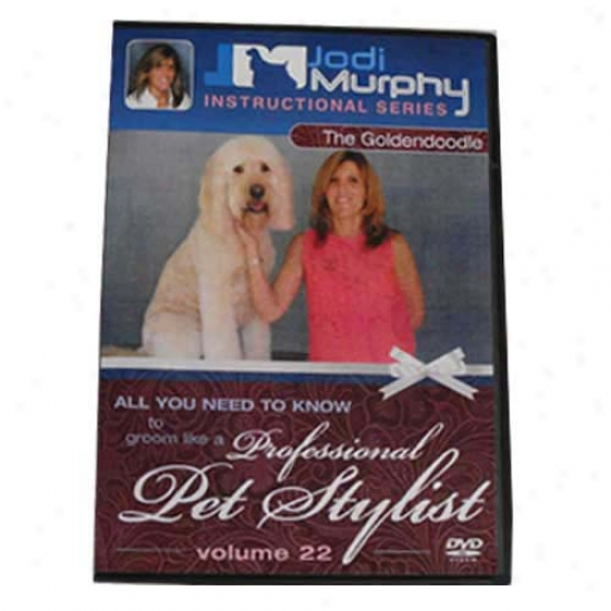 Goldendoodle Grooming Dvd By Jodi Murphy