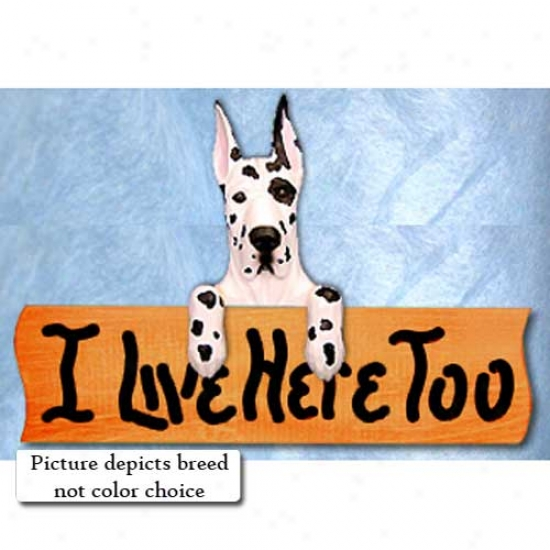 Great Dane I Live In the present state Too Maple Accomplish Sign Fawn