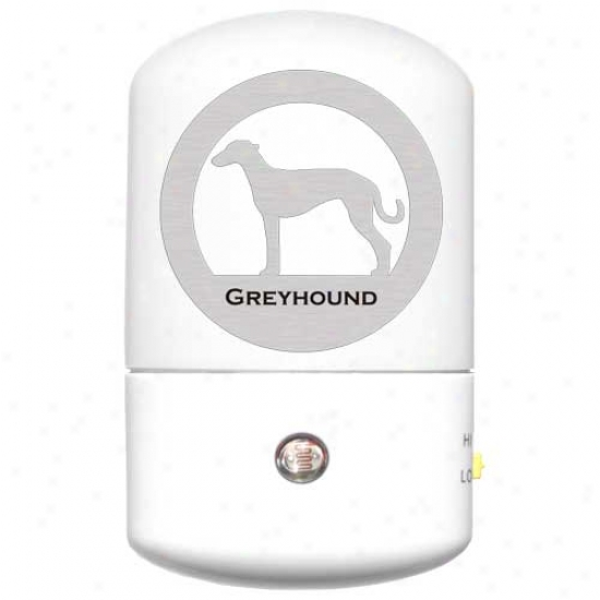 Greyhound Led Night Light