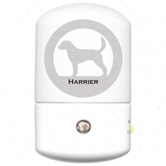 Harrier Led Nighy Light