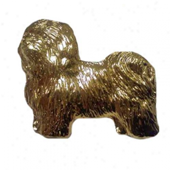 Havanese Pin 24k Gold Plated