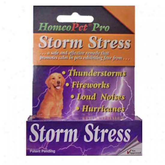 Homeopet Storm Stress For Dogs 20 To 80 Po8nds