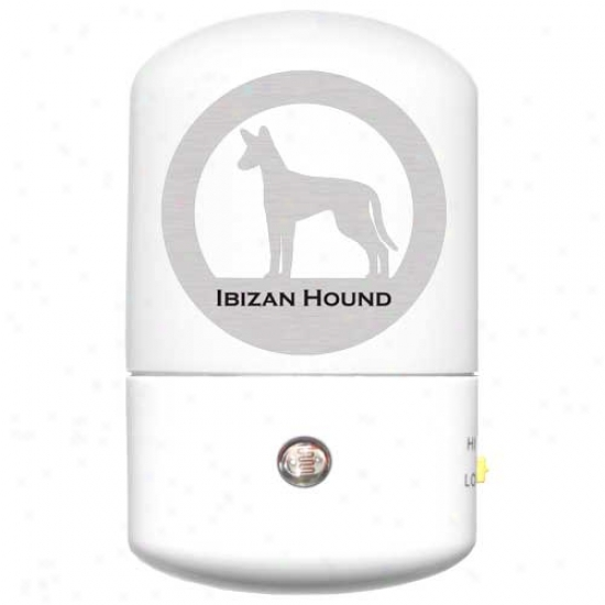 Ibizan Hound Led Night Light