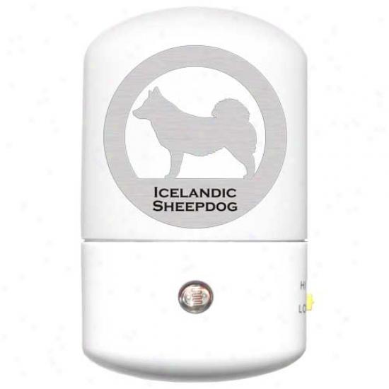 Icelandic Sheepdog Led Night Light