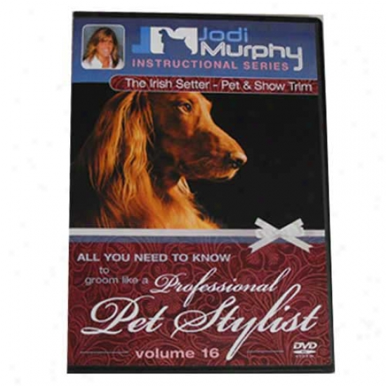 Irish Setter Grooming Dvd By Jodi Murphy