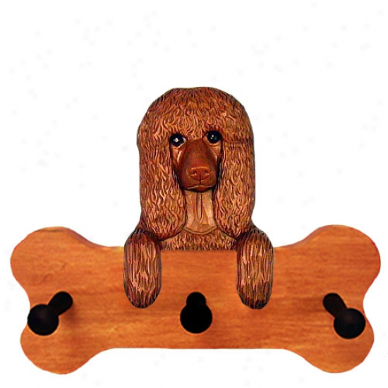 Irish Water Spaniel Bone Hang Up Maple Finisy