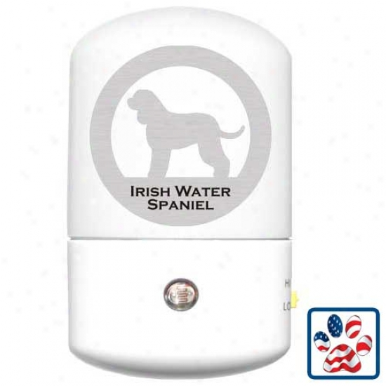 Irish Water Spaniel Les Night Light