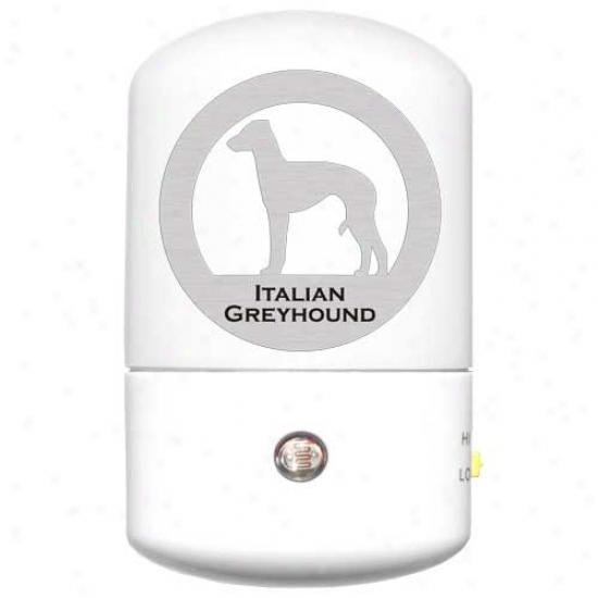 Italian Greyhound Led Night Light