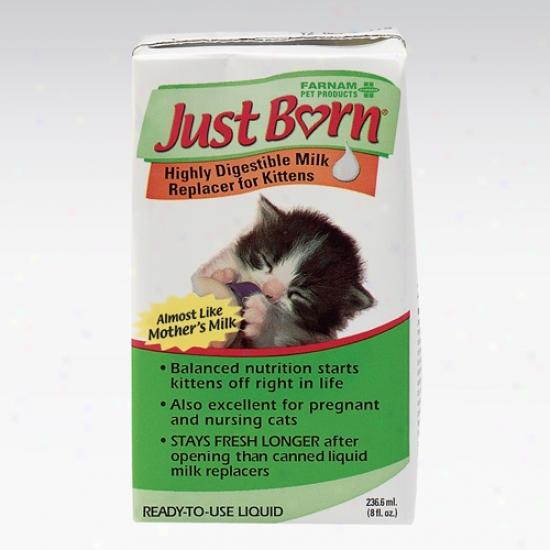 Just Born Milk Replacer Liquid Fo rKottens, 8oz