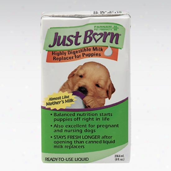 Just Born Plus Colostrum Milk Replacer Liquid For Puppies, 8 Ounces