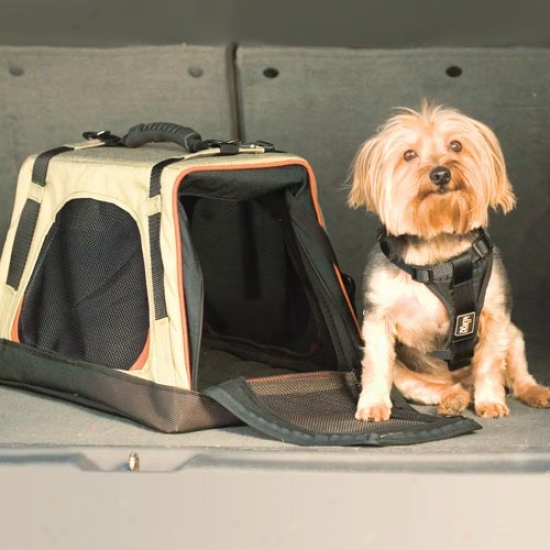 Kurgp Wander Carrier Collapsible Pet Carrier