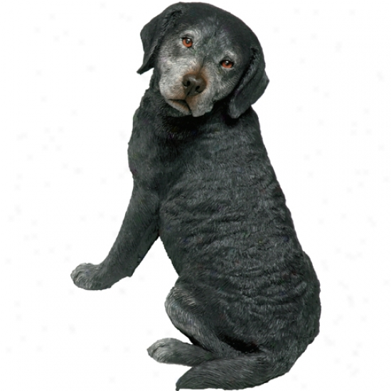 Labrdor Retriever-black (senior) Original Size Sandicast Sculpture