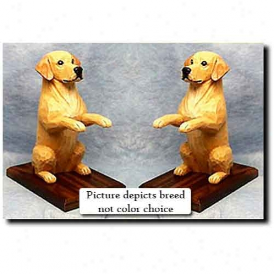 Labrador Retriever Bookends Chocolate