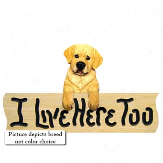 Labrador Retriever I Live Here Too Oak Finish Sign Chocolate Youth