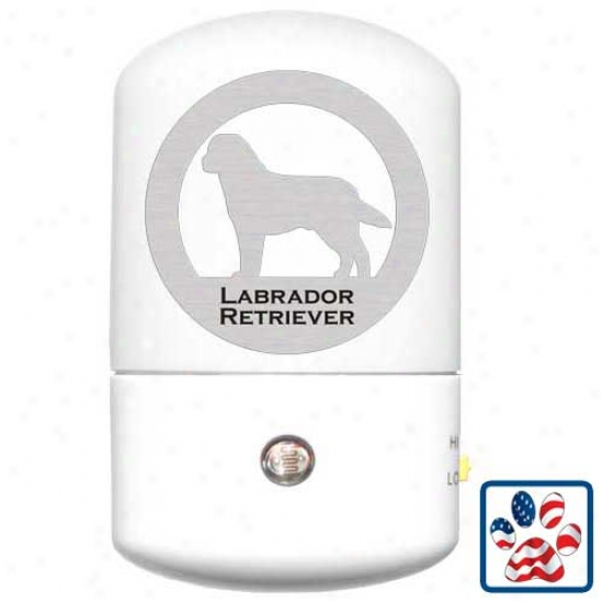 Labrador Retriever Led Night Light
