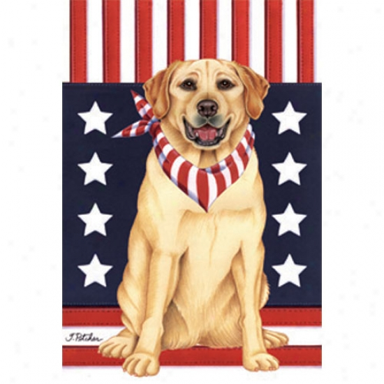 Labrador Retriever (yellow) Patriotic Breed Languish