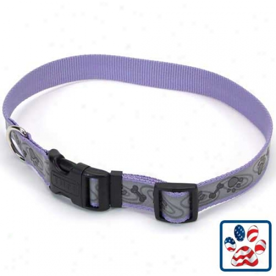 Lazer Brite Adjustable Collar 5-8 Inch X 12 To 18 Inches Periwinkle Paws