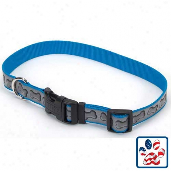 Laze5 Brite Collar 1 In X 18 To 26 Inches Turquoise Bones