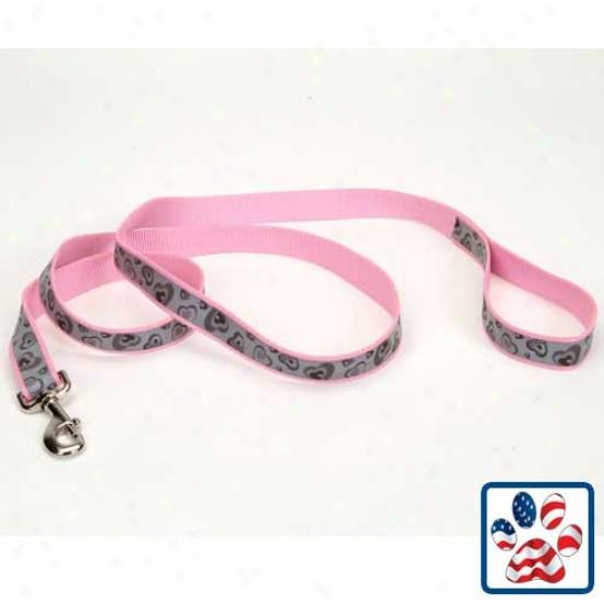 Lazerbrite Dog Lead 5/8inch X 6 Feet Pink Hearts