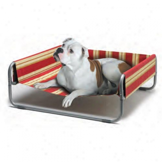 Lazy Pet Sof-bed 34x34 Indoor Outdoor Pet Bed