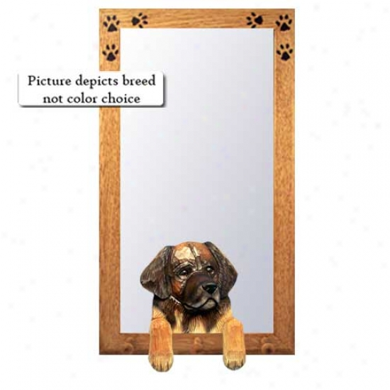 Leonberger Hall Mirror With Basswood Walnut Frame