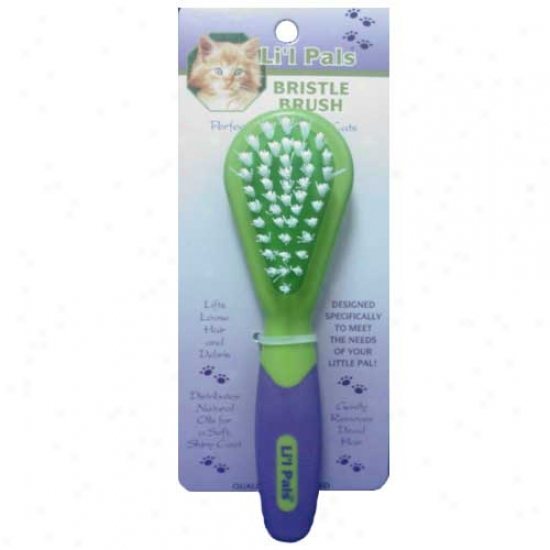 Lil Pals Kitten Bristle Brush