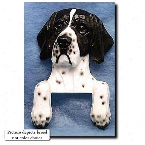Liver And White Pointer Door Topper