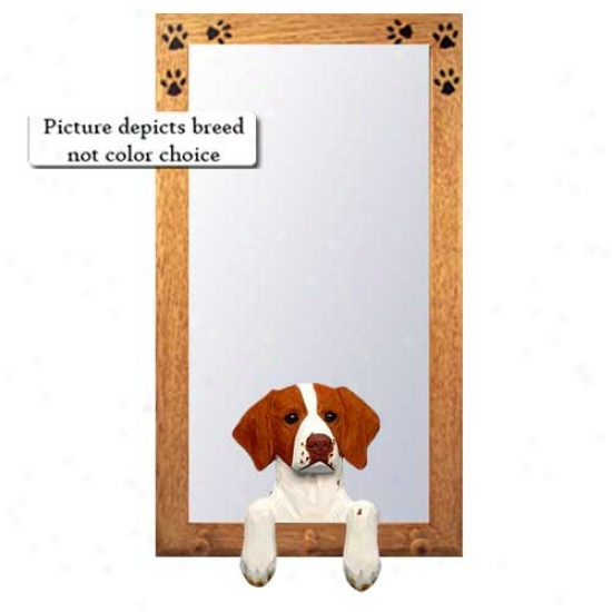 Liver Brittany Large room Reflector With Oak Golden Frame
