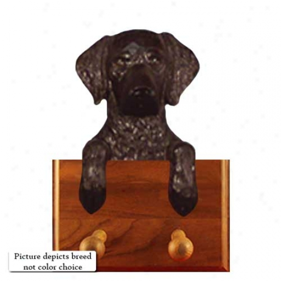Liver Curly Coated Retriever Leash Holder