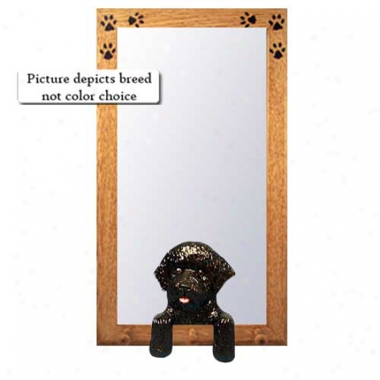Liver Portuguese Water Dog Hall Mirror With Basswood Walnut Frame