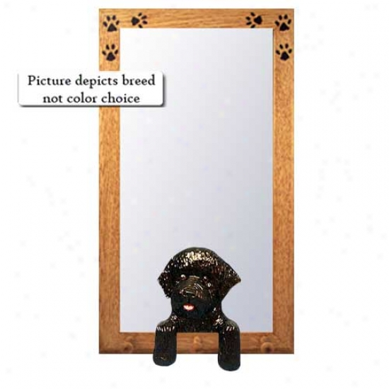 Liver Portuguese Water Dog Hall Mirror With Oak Golden Frame