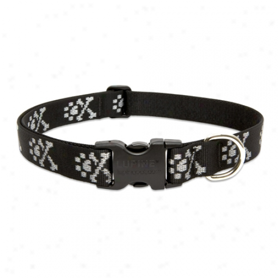 Lupine Bling Bonz Adjustqble Collar 1 Inch X 16-28 Inches