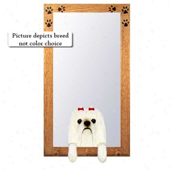 Maltese Hall Mirror With Oak Golden Frame
