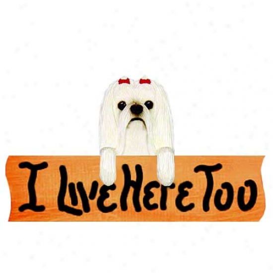 Maltese I Live Hrre Too Maple Finiish Sign