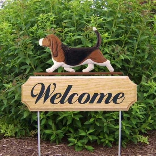 Michael Park Dog In Gait Welcome Stake Basset Hound Tri
