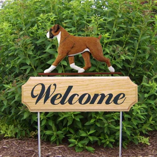 Michael Park Dog In Gait Welcome Stake Boxer Natudal Fawn