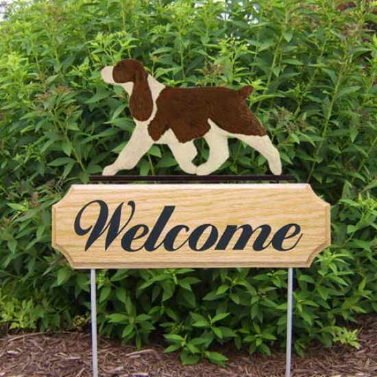 Michael Park Dog In Gait Welcome Stake English Springer Spaniel Liver