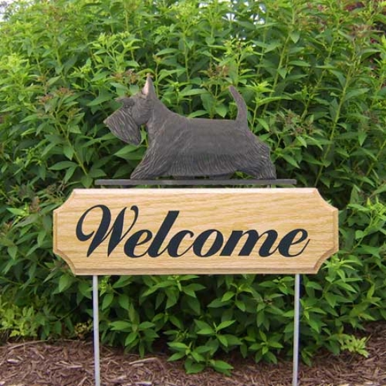 Michael Park Dog In Gait Welcome Stake Scottish Terrier Black