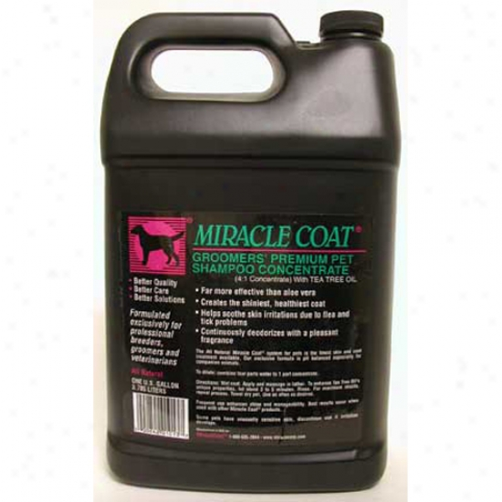 Miracle Coat Premium Shampoo Galloh 4 To 1 Concentrate