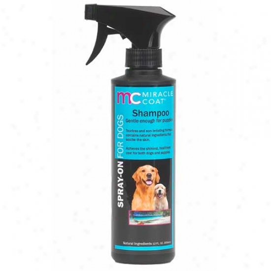 Miracle Coat Spray On Dog Sgampoo 12oz