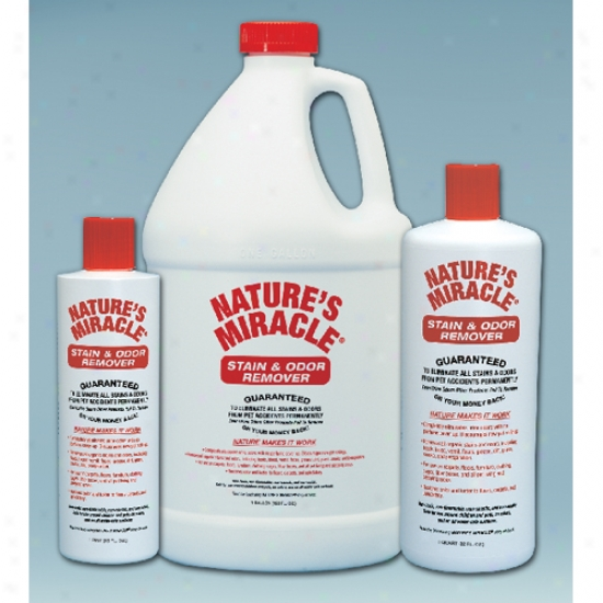 Natures Miracle Stain And Odor Remover Gallon
